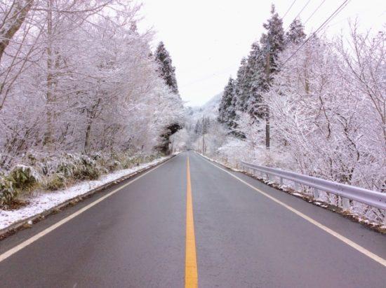 冬の箱根道