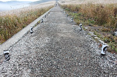 箱根ススキ草原の路面