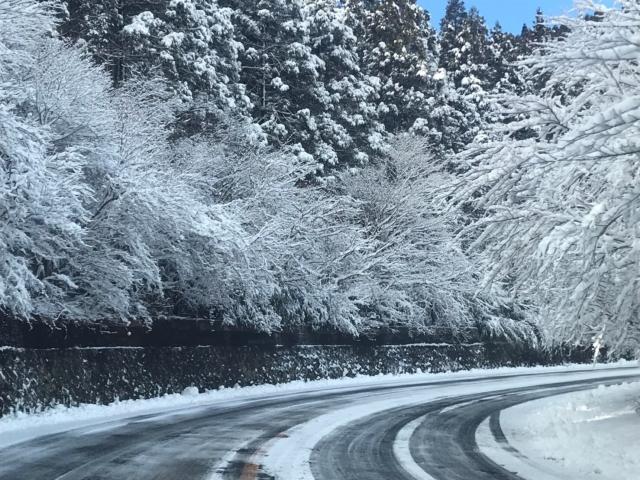箱根の雪道