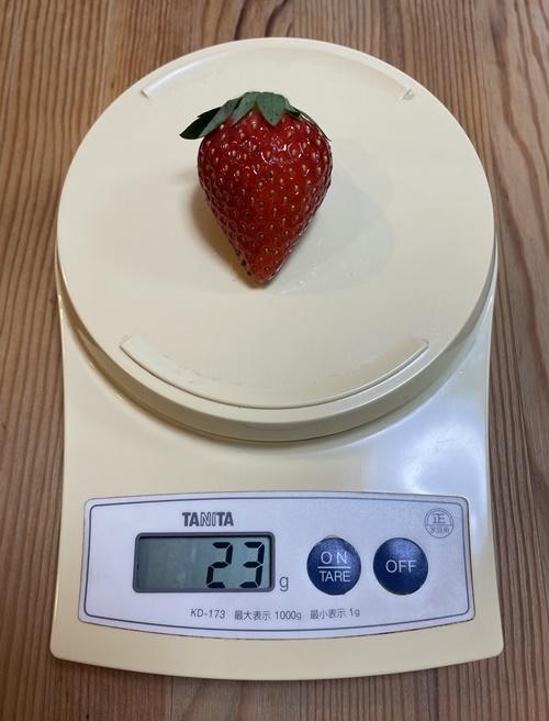 一粒23グラムのイチゴ