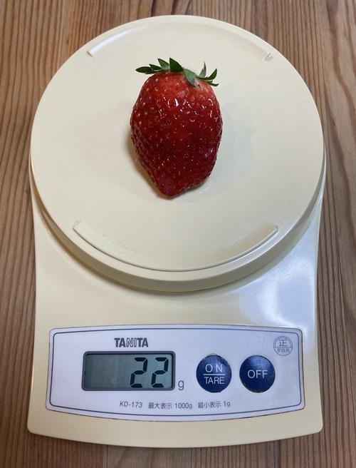 1個22gの苺