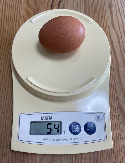 卵1個54g