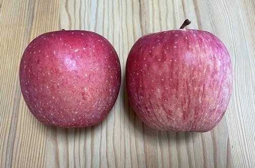 横から見た2つのリンゴ