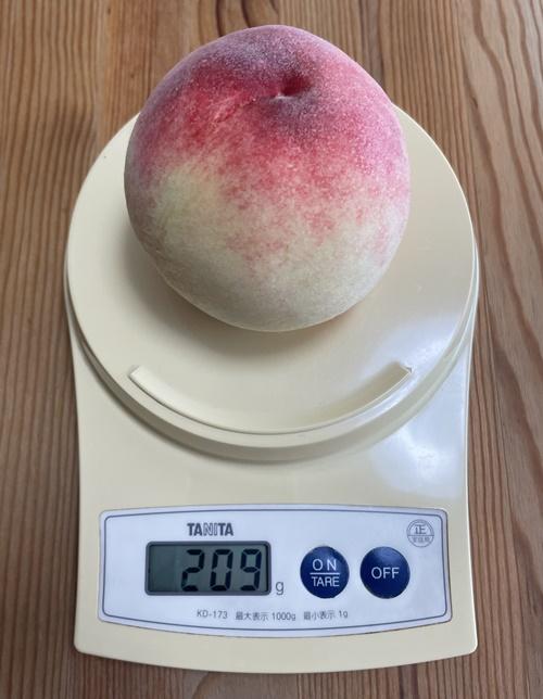 1個209gの桃