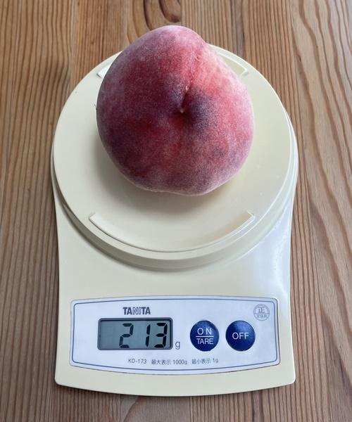 1個213gの桃