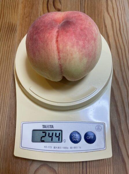 1個244gの桃