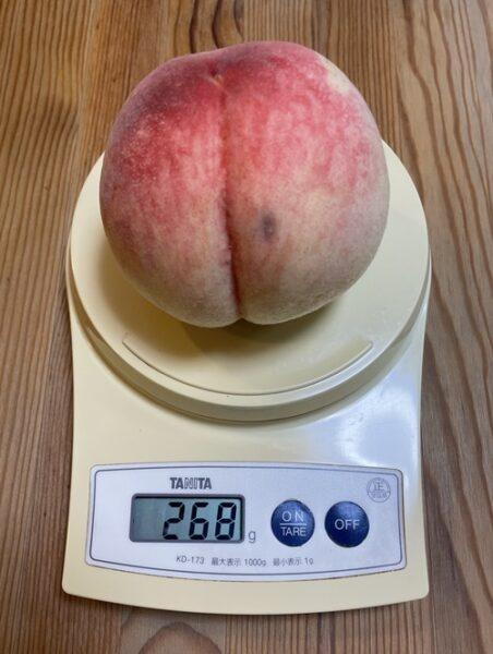 268gの2Lサイズの桃