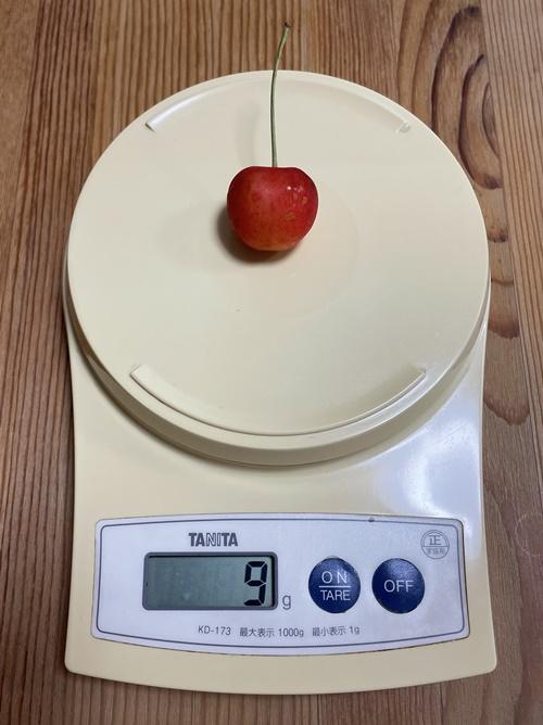 大きめのさくらんぼの粒の重さ