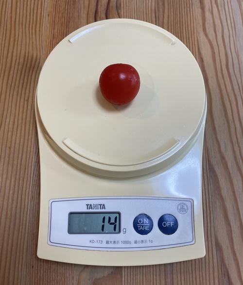 ミニトマト1個の重さ