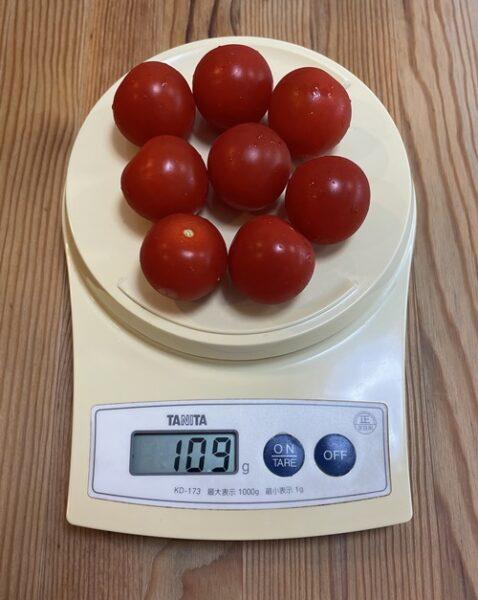 ミニトマト100g分