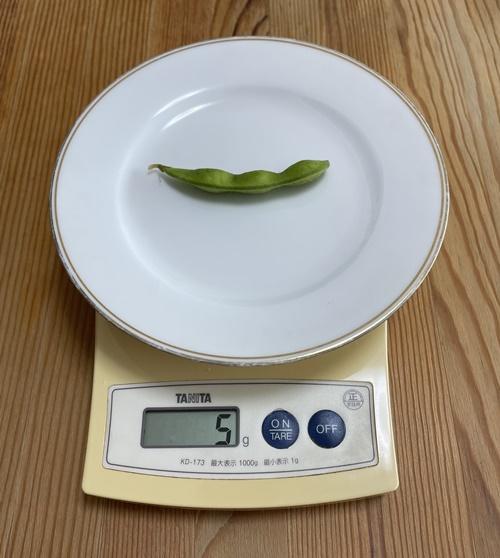 1個5gの枝豆