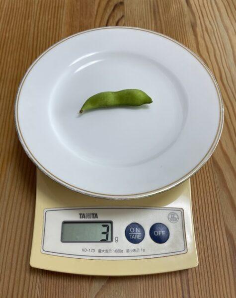 1個3gの枝豆