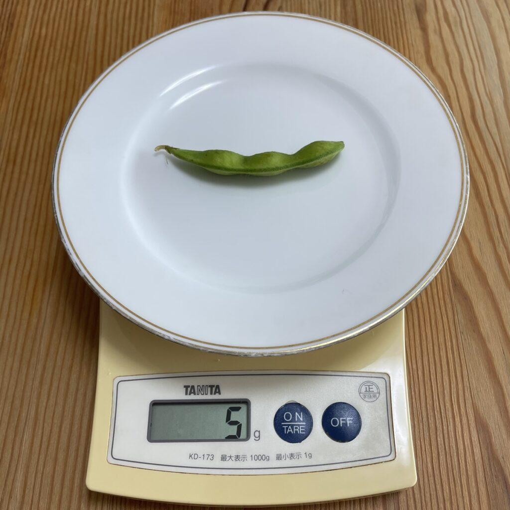 枝豆の重さを量る