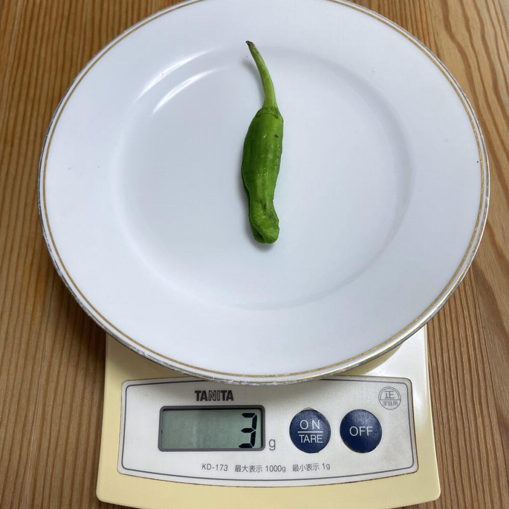 ししとうの重さをキッチンスケールではかる