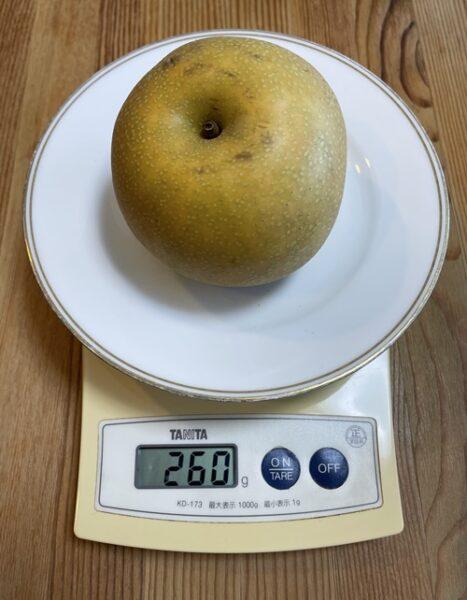 1個260gの梨