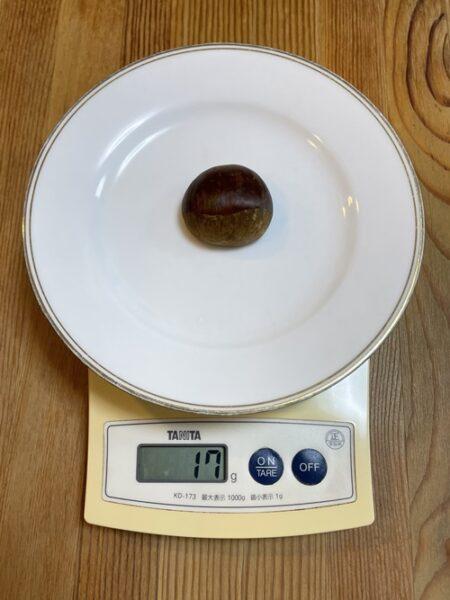 小さめの栗は1個17g